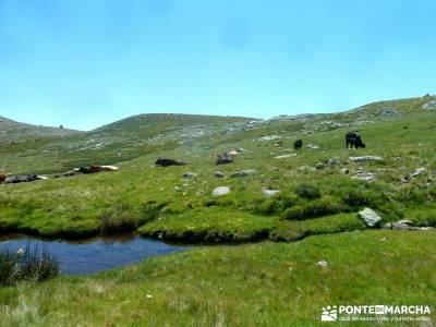 El Morezón - Sierra de Gredos; puente de la constitucion; viajes semana santa;senderismo a medida